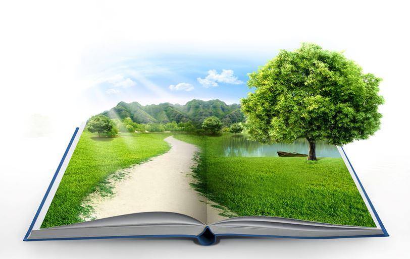 Как окружающая среда влияет на формирование человека